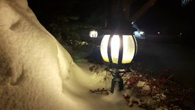 Julgranfilialer och röda bär på en lykta under en fallande snö lager videofilmer