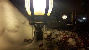 Julgranfilialer och röda bär på en lykta under en fallande snö stock video