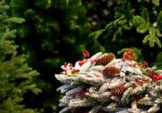 Julgrangarneringar med sörjer kottar med vit snö Fotografering för Bildbyråer