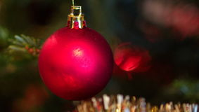 Julgrangarneringnärbild Fotografering för Bildbyråer