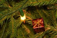 Julgranljus och garneringar på granträdfilialer Royaltyfria Bilder