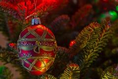 Julgranprydnad på träd Arkivbilder