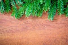 Julgranträd på ett träbräde Arkivfoton
