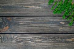 Julgranträd på träbakgrund Arkivfoton