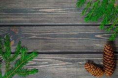 Julgranträd på träbakgrund med kottar Arkivbilder