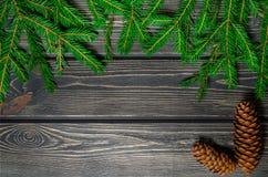 Julgranträd på träbakgrund med kottar Royaltyfri Fotografi