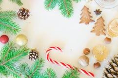 Julgrantree med garneringen Royaltyfria Foton