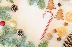 Julgrantree med garneringen Royaltyfri Foto
