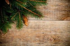 Julgrantree med pinecones Arkivfoto