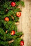 Julgrantree med pinecones och äpplen Fotografering för Bildbyråer