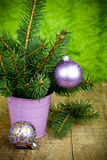 Julgrantree och purpura garneringar Royaltyfri Foto
