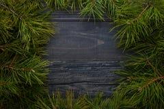 Julgrantree på ett träbräde Fotografering för Bildbyråer