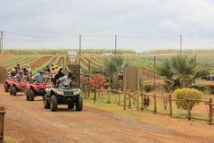 Juli 2014 Casela-Naturpark, Mauritius, Afrika Anfang von Gruppenviererkabelfahrradsafari-Abenteuer tripon ein bew?lkten Tag Zucke stockfotos