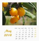 Juli-het ontwerp van de het Malplaatjevlieger van de Bureaukalender 2018 valencia Stock Afbeelding