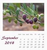 Juli-het ontwerp van de het Malplaatjevlieger van de Bureaukalender 2018 valencia Stock Afbeeldingen