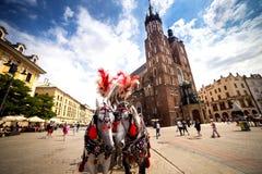 10 Juli 2017-Krakow, Polen - vagn med hästar, gammal stadscent Royaltyfria Foton