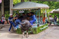 15,2017 juli rit op karbouwwagens bij villaescudero, Laguna, Royalty-vrije Stock Fotografie