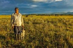 17 juli, 2016 - Schapen herder met hond op Hastings Mesa dichtbij Ridgway, Colorado van vrachtwagen Stock Foto