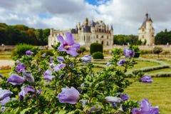 Juli 23, 2017, slott av Chenonceau france fasad av medeltida damernas slott Den kungliga medeltida slotten av Chenonceau parkerar royaltyfria bilder