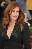 Julia Roberts. LOS ANGELES, CA - JANUARY 25, 2015: Julia Roberts at the 2015 Screen Actors Guild  Awards at the Shrine Auditorium Royalty Free Stock Photos