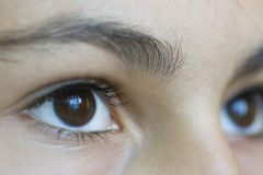 Julia`s eyes Royalty Free Stock Photography