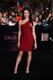 Julia Voth. At The Twilight Saga: Breaking Dawn - Part 1 Los Angeles Premiere, Nokia Theatre L.A. Live, Los Angeles, CA 11-14-11 Stock Photos