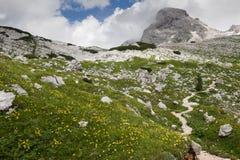 Julian Alpen, Slovenië Stock Foto