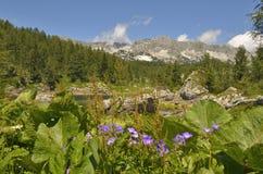 Julian Alps Stock Photos