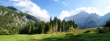 Julian Alps / Italy. Panoramic photo of forest with mountains in background Stock Photography