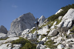 Julian alps - Jalovec peak and mountaineer Stock Images