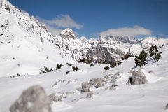 Julian Alps in Moonlight. With fresh snow Royalty Free Stock Photos