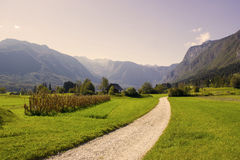 Julian Alps -  panorama around lake Bled, Slovenia Royalty Free Stock Photo