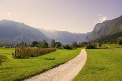Julian Alps -  panorama around lake Bled, Slovenia Royalty Free Stock Photo