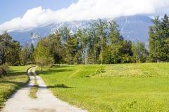 Julian Alps - panorama em torno do lago sangrado Fotos de Stock