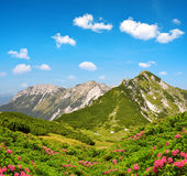 Julian Alps, Slovenia Royalty Free Stock Photography