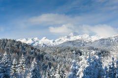 Julian fjällängar med Triglav i vintern Arkivfoto