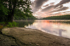 Julian Price Lake Shoreline arkivbilder