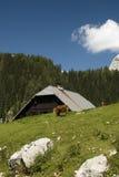 Julianische Alpen Stockbilder