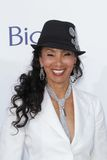 Julie Brown at the 2012 Billboard Music Awards Arrivals, MGM Grand, Las Vegas, NV 05-20-12 Royalty Free Stock Photography