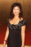Julie Chen Royalty Free Stock Photos