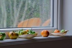 Julie-` s Tomaten Lizenzfreie Stockbilder