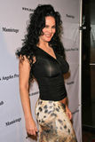 Julie Strain Stock Photography