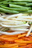 Julienne vegetables Stock Image
