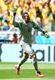 Julio Cesar Coupe du monde 2014 Fotos de Stock Royalty Free