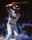 Julio Franco Royalty Free Stock Image