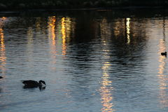 Julius M Kleiner Memorial Park no crepúsculo fotografia de stock
