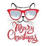 Julkort katt i exponeringsglas royaltyfri illustrationer