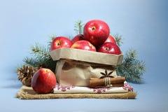 Julkort med röda äpplen arkivbild