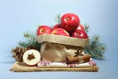Julkort med röda äpplen arkivfoto