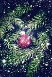 Julkortet med garnering - moussera den röda struntsaken över gran Royaltyfria Bilder